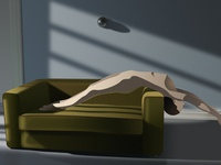 Digital Illustration / The Skin I Live in
