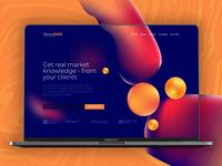 Bmore RAW | Landing Page Ui / Ux Design