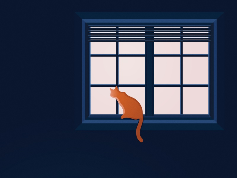 Social Distancing illustrator quarantine isolation social isolate blinds pink blue tabby orange cat watching window distance illustration