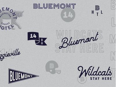 Bluemont Hotel Brand Identity