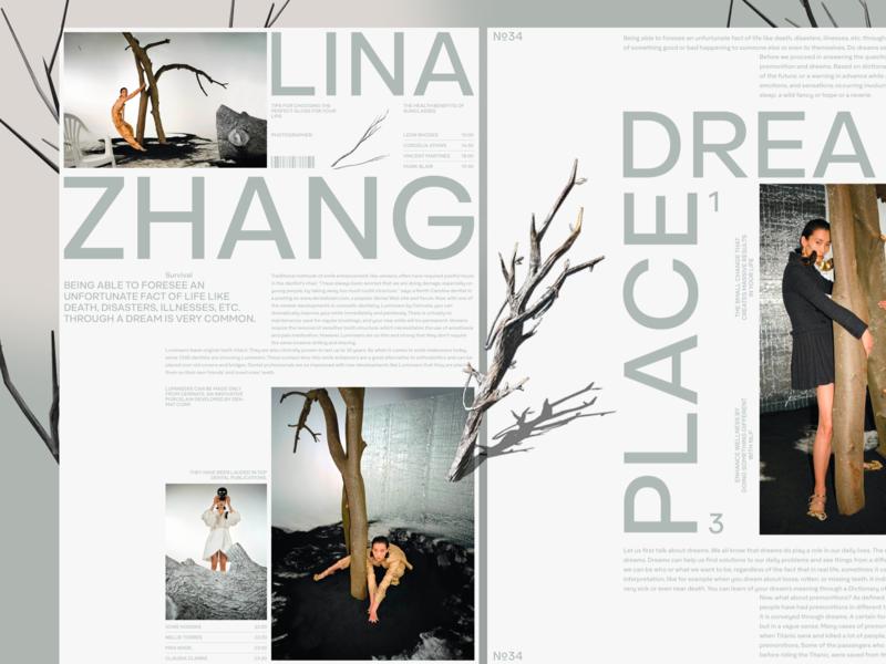 Lina typography minimal ui photo fashion slide book design news interface web