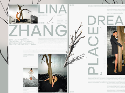 Lina typography minimal ui photo fashion slide book design news interface web