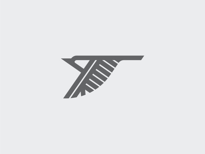 Bird kookaburra flying bird fly logodesign flight birds bird monoline geometric branding icon illustration design logo flat vector