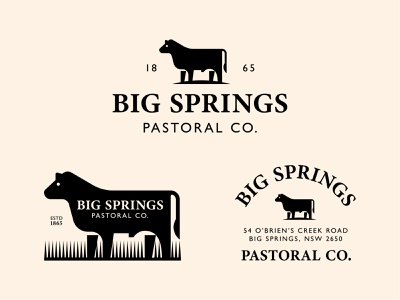 Big Springs Pastoral Co. angus tail flat vector badge animal ranch farm bull cow steer geometric branding typography logo