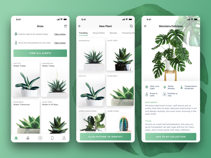 Grow iOS App ui ux design ui design daily reminder app plants app iphone app ios app reminder plants ui  ux ui design visual design uidesign ux design