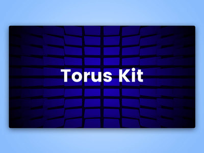 Torus Kit Experiments