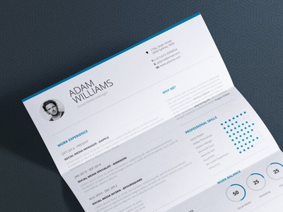clean resume vol 7 word and indesign cv template - Resume Template Indesign
