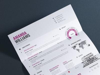 Infographic Resume Vol.1 indesign resume word template lebenslauf infographic cv curriculum template curriculum vitae resume design cv infographic resume