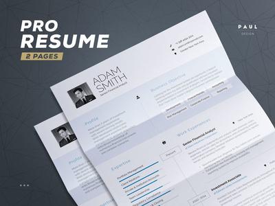 Resume for Pros  pros new job employment creative template lebenslauf curriculum vitae cv resume