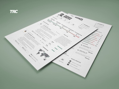 infographic resume cv template volume 9 by paul dribbble