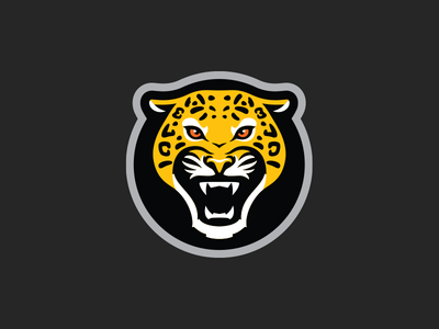 Jaguares Taekwondo