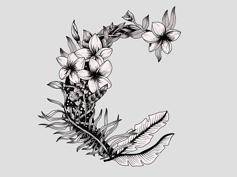 C illustration floral letter lettering