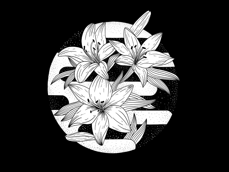 Letter O o flowers floral letter