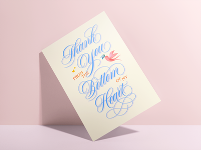 Thank You From The Bottom Of My Heart Card, Spencerian Lettering type handlettering typography illustration card design lettering artist thank you card cursive lettering art art licensing greeting card design greeting card ornamental hand lettering lettering script calligraphy script lettering spencerian lettering spencerian