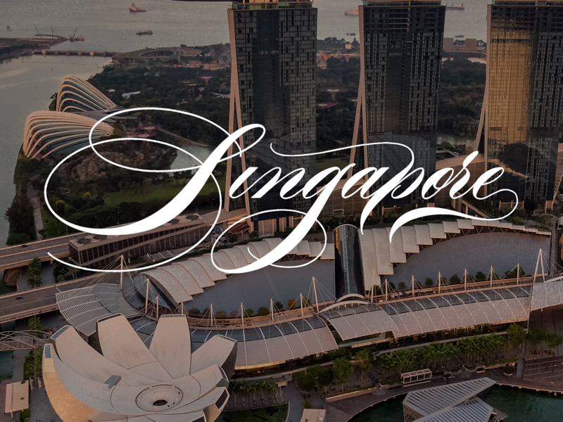 Singapore - Calligraphy x Photo flourishing typography design procreate traditional script copperplate spencerian lettering script calligraphy singapore