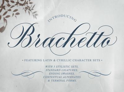 Brachetto Script Font