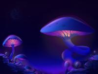 Mushroom Planet