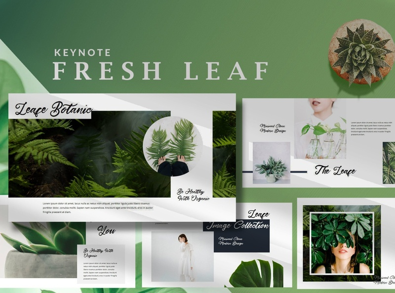 Minimal Fresh Leaf - Nature Keynote Template photographer agents official presentation portfolio minimalism plant plants forest promotions nature template fresh leaf minimalist nature minimalist template keynote template nature keynote nature leaf fresh minimal