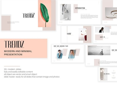 TRENDZ Modern Presentation Template multipurpose corporate professional powerpoint elegant creative business clean minimal simple agency concept development web development web design website templates template presentation modern