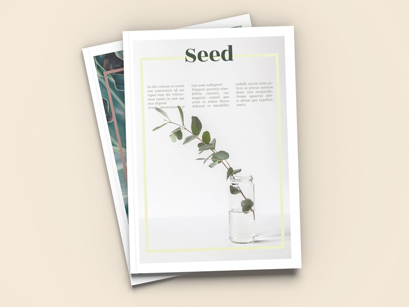 Seed A4 Magazine Template Free Download By Templates Dribbble