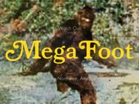 Mega Foot
