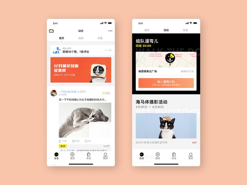 Pet service App pet app app design ui