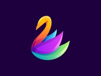 Awesome Colorful Swan