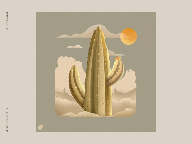 Arizona cactus cactus illustrator illustration abstract art procreate art digital art artistic