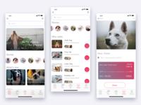 Animal Shelter App