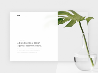Odd Landing Page Concept weird plant minimal modern simple brand agency digital