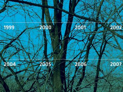 20 Years trees