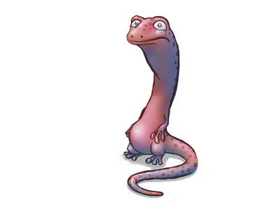 Salamander dribbble