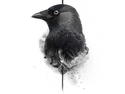 No Bird Sang - No. 01 digital crow art print poster bird manipulation photo