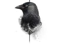 No Bird Sang - No. 01