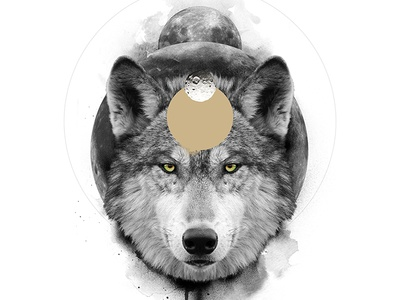 The Wolf / The Transformative animal spirit symbolism white black wolf digital art print poster manipulation photo