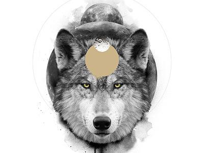 The Wolf / The Transformative animal spirit symbolism white black wolf digital art print poster manipulation photo