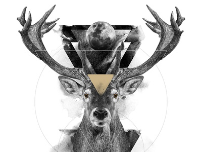 The Deer / The Feminine animal spirit symbolism white black deer digital art print poster manipulation photo