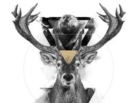 The Deer / The Feminine
