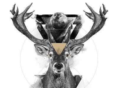 The Deer / The Feminine animal spirit symbolism white black deer digital art print poster manipulation photo