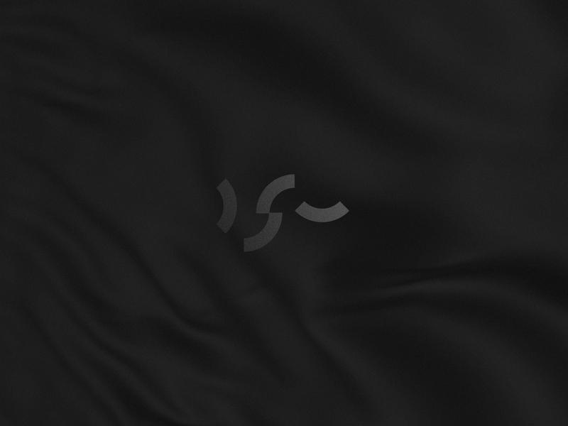 DSV - Data Science Vault Logo sign logotype logo