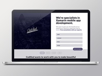 Codified Security Responsive Landing Page