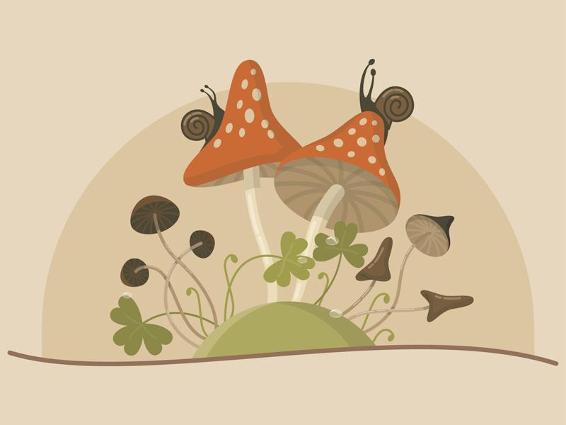 Mashrooms mashrooms illustration