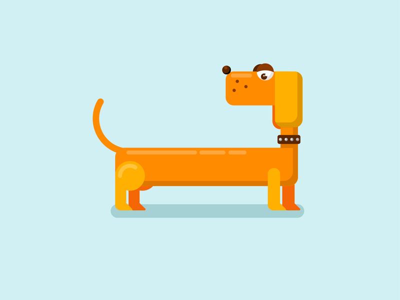 Dachshund flat illustration illustration symbol of years dachshund dog
