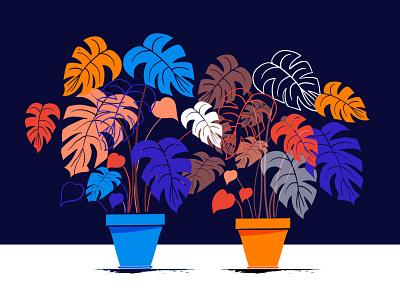 Monstera plant monstera plant design vector ui minimal illustration