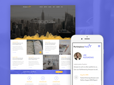 Marketplace Pulse webdesign ux ui pulse seller web blog stats data market