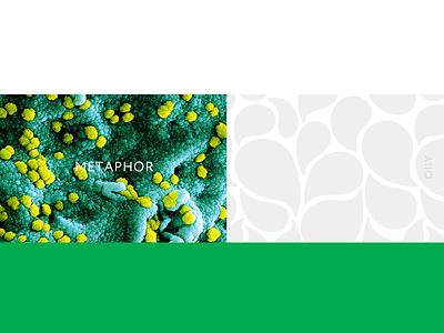 03 pharmacy | metaphor metaphor bacteria vector pattern design conception pattern design branding brand