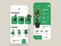 🌱 Smart Pot App