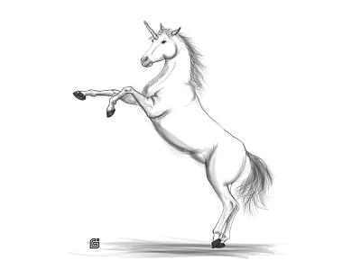 unicorn wacom onebywacom illustration unicorn
