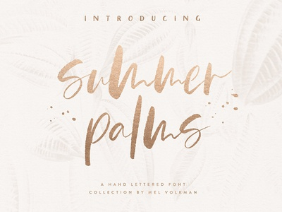 Summer Palms Font Collection