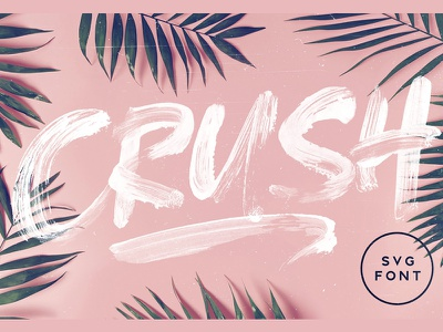 CRUSH SVG Font advertising cosmetic packaging textured tropical texture paint brush color font crush svg font svg font svg